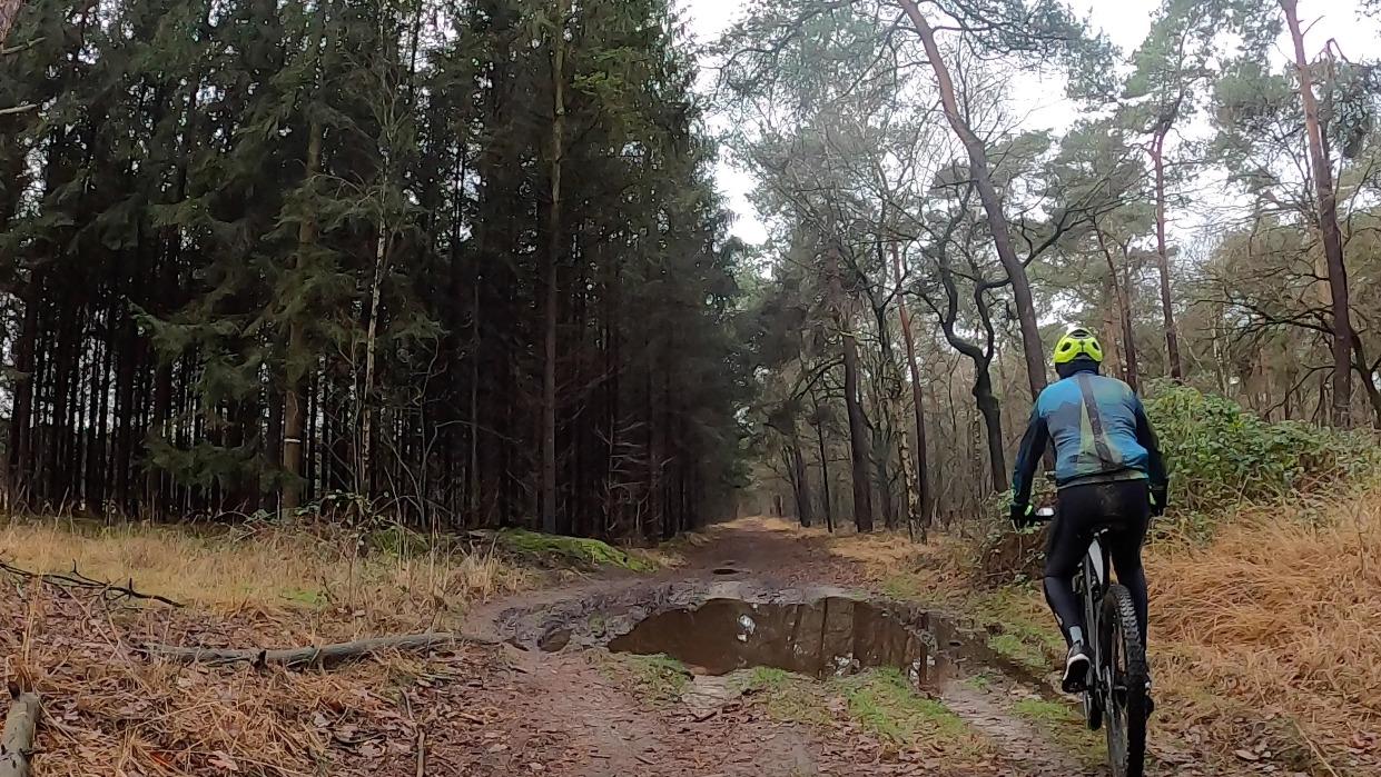 Mountainbike route bos