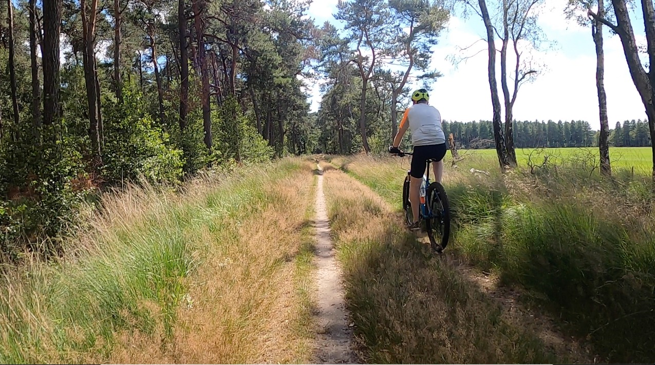 Mountainbiken in Noord-Brabant